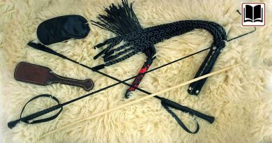 Spanking Spielzeuge, Flogger, Gerte, ROhrstock, paddle